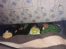 التوائم الأربع في المركز الصحي في بوصطيلة شرقي موريتانيا (التواصل الاجتماعي)