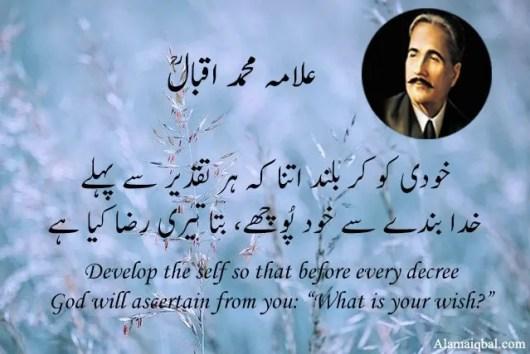 Poetry of allama iqbal in english