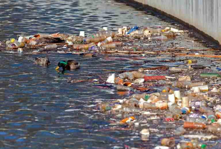 Sampah-Organik-dan-Anorganik