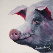 Starling-pig head-640