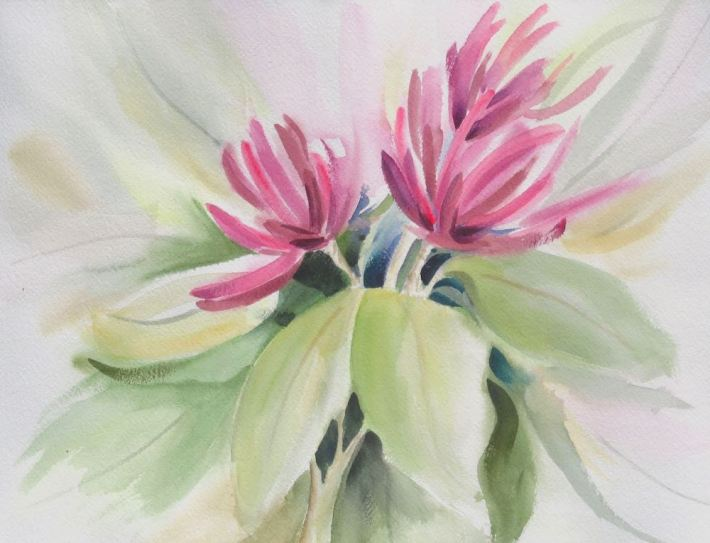 Sweet Betsy Flower- Watercolor