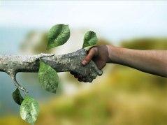 ecologia-2