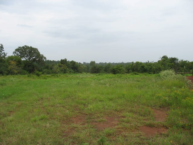 CR 820 – 88 ACRES – $318,765 – MLS#2170702