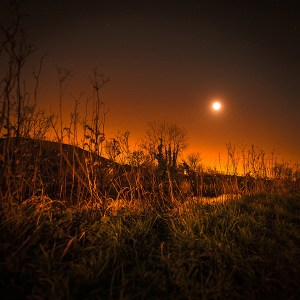 Royal Canal Moon - Fine Art Print