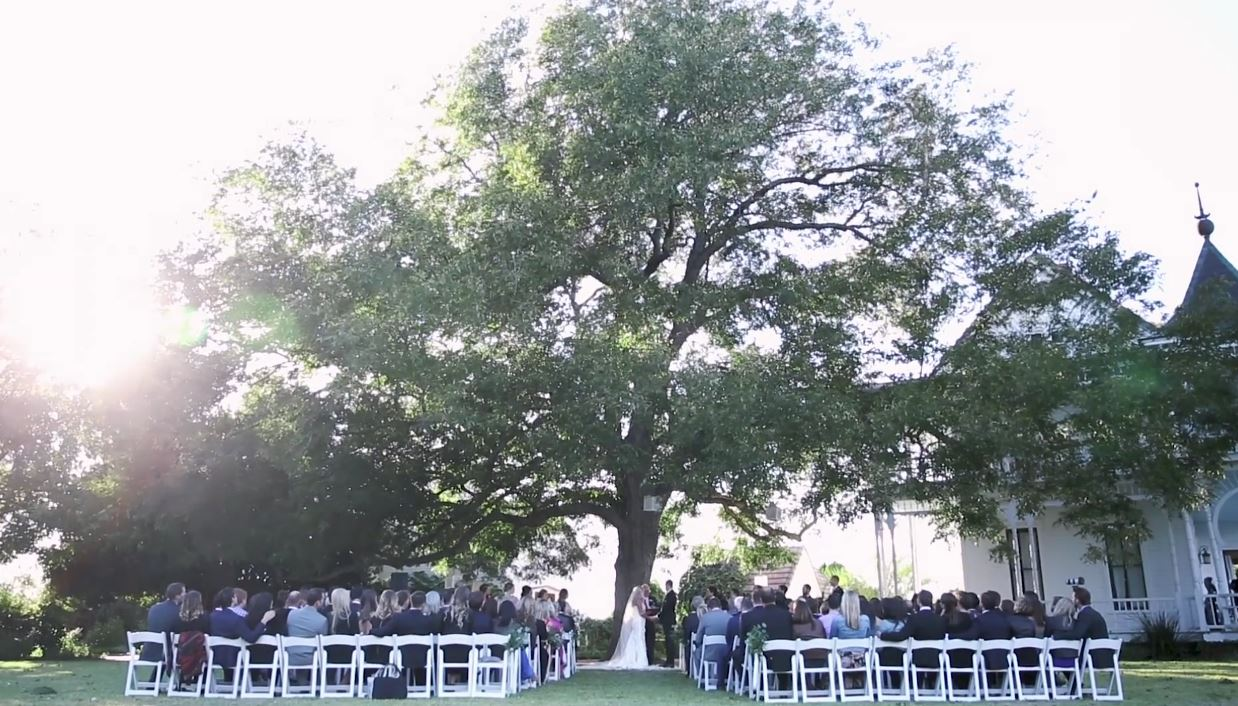 A truly glorious video of a wedding in Austin, TX under a pecan tree with a choir of birds!