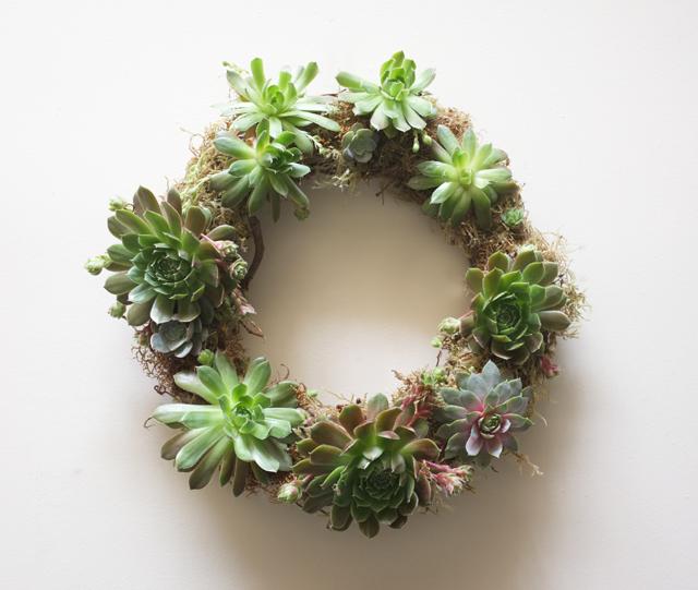 Succulent Wreath Large