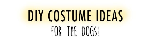 Dog Costume Banner