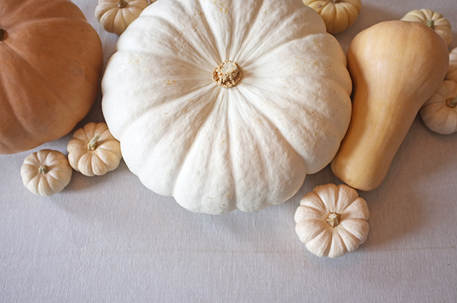 Neutral Pumpkins