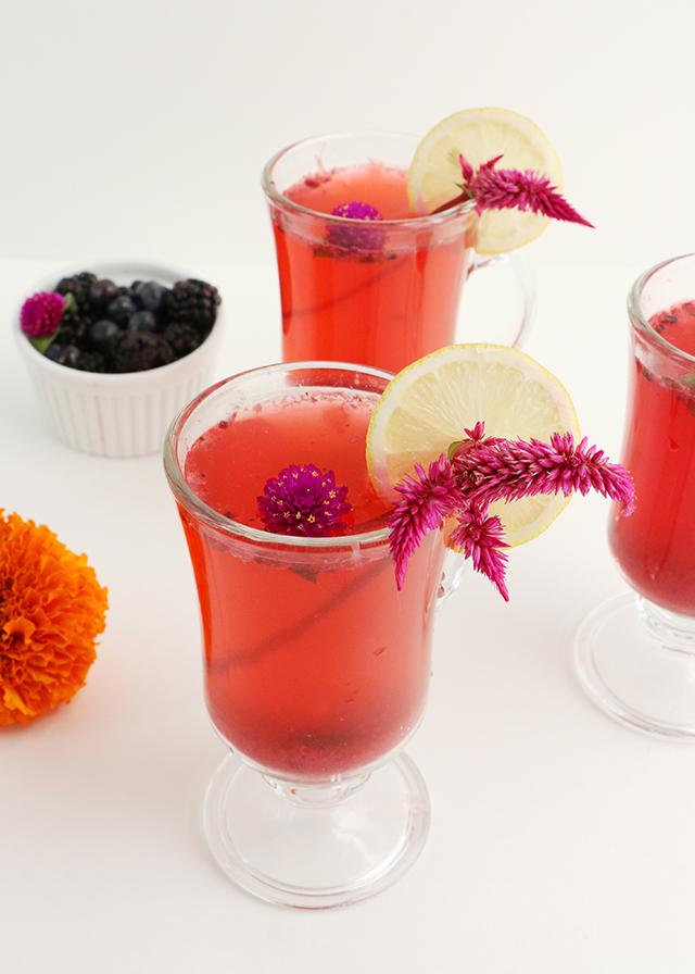 Blackberry Vodka Cocktail 20