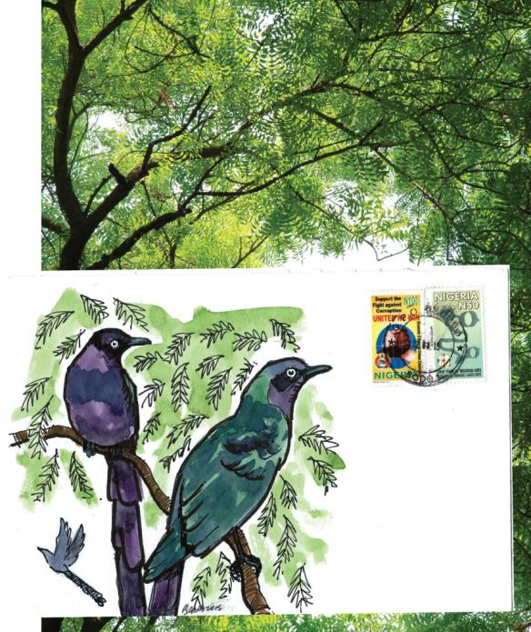 starling-card