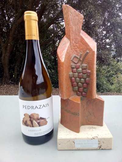 pedrazais godello Cata Oficial dos Viños de Valdeorras