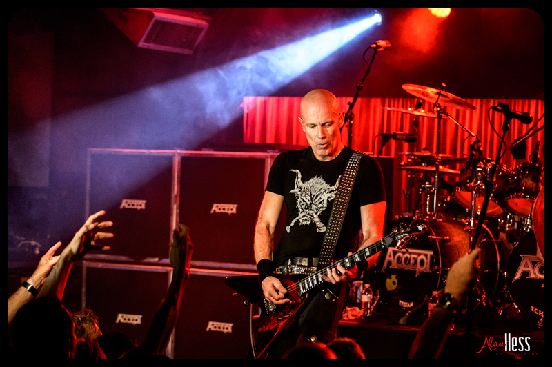 Accept at The Belly Up Tavern