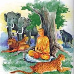 Buddha with Animals