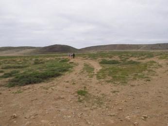 Across the plain
