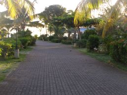 The road to the pool