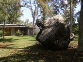 Turtle rock?