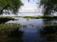 The view out to the lagoon