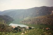 View over Douro RIver