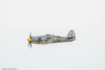 RN Historic Flight, Hawker Sea Fury T20; FAA