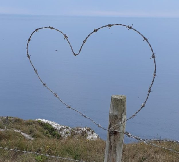A heart formed of barbed wire
