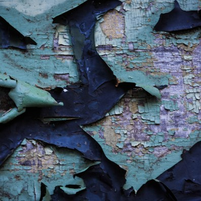 Peeling Paint – Palo Colorado Canyon, CA