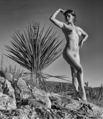Atop a rock stood a yucca, then our lovely associate.