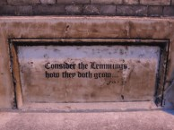 graffiti-in-norwich-very-funny