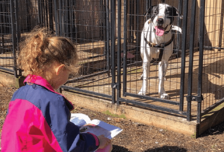 Club Connects Children with Animals