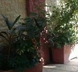 علاج رطوبة الجدران 0555717947 حل رطوبة الجدران علاج رطوبة الجدران 0555717947 معالجة رطوبة الجدران 0555717947 اسباب رطوبة الجدران 0555717947 مشكلة رطوبة الجدران 0555717947