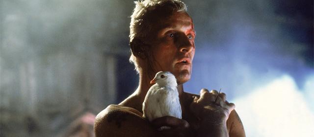 Rutger Hauer dans Blade Runner (1982)