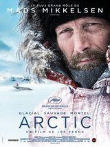 Affiche d'Arctic (2019)