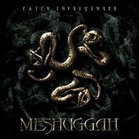 Meshuggah: Catch Thirtythree