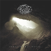 Saille: Irreversible Decay
