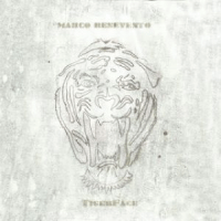 Marco Benevento: TigerFace