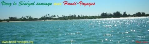 Handi-voyage