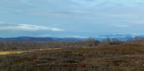 New Research From Arctic: Thawing Permafrost Peatlands May Add to Atmospheric Co2 Burden