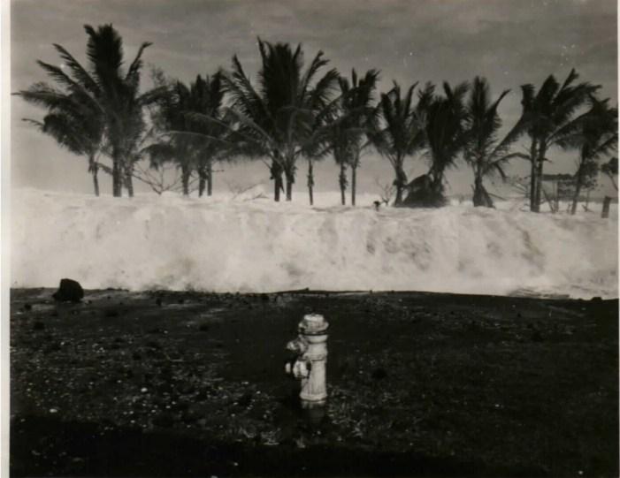 1946 Tsunami Survivor Shares her Story