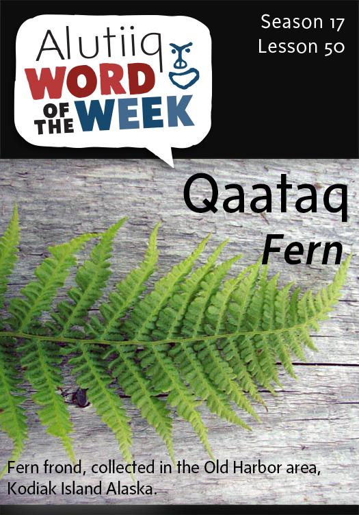 Fern-Alutiiq Word of the Week-June 7