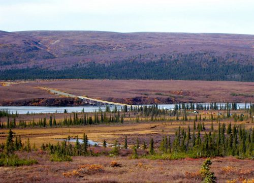 Denali Implements Private Vehicle Access for Park Road