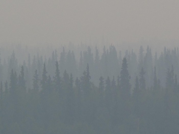 Alaska's Wildfires and the Changing Boreal Forest
