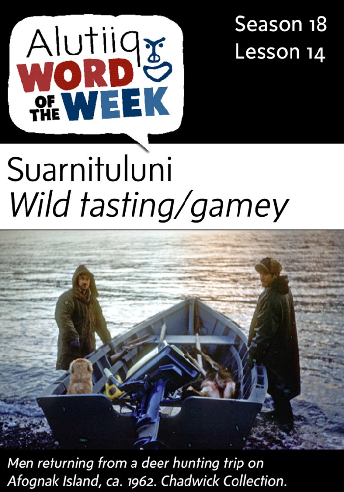Wild Tasting/Gamey-Alutiiq Word of the Week-September 27th