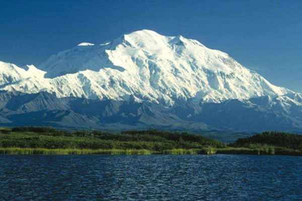"""Denali to Host """"Need for Seed"""" Volunteer Event August 8"""