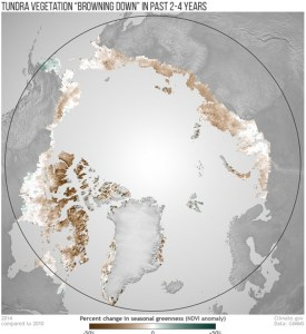 Arctic vegetation trends from 2010-2014. (Credit: NOAA Climate.gov image)