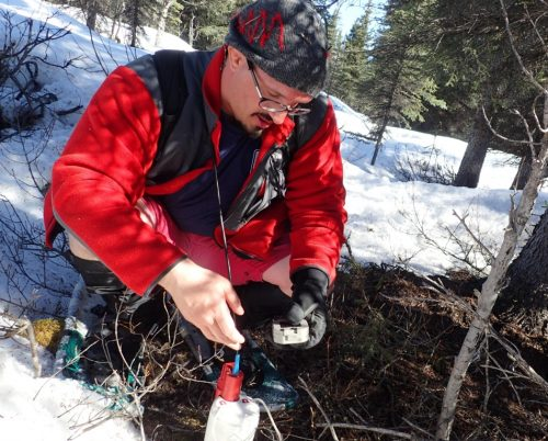 Carpeting the Denali Fault with Earthquake Sensors