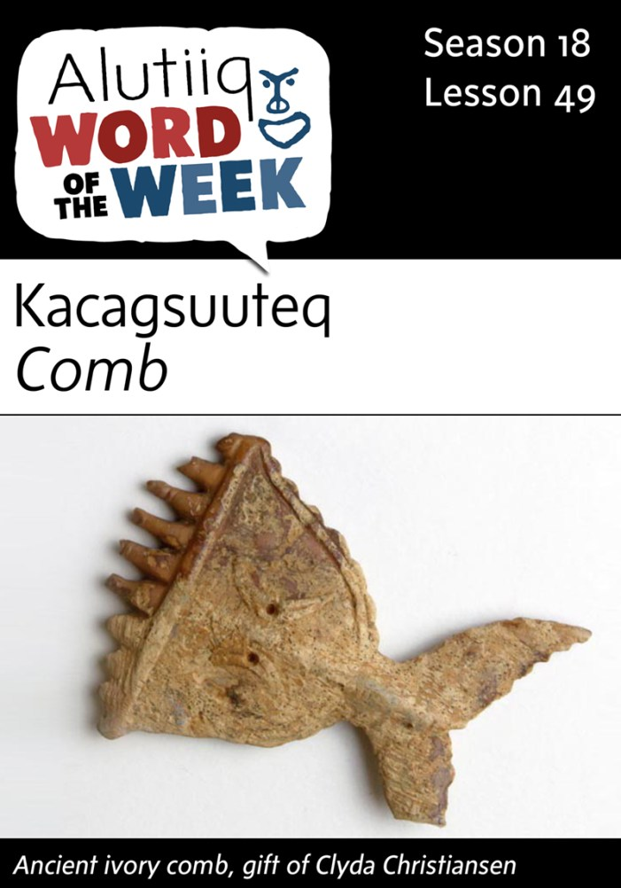 Comb-Alutiiq Word of the Week-May 29th