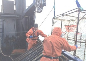 The Stimson crew inspecting cod pots. Image-OLE Enforcement Officer Noah Meisenheimer
