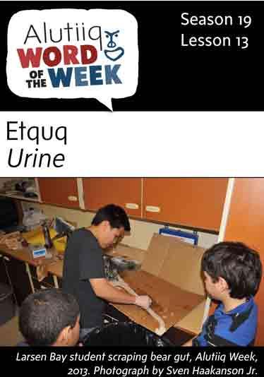 Urine-Alutiiq Word of the Week-September 25