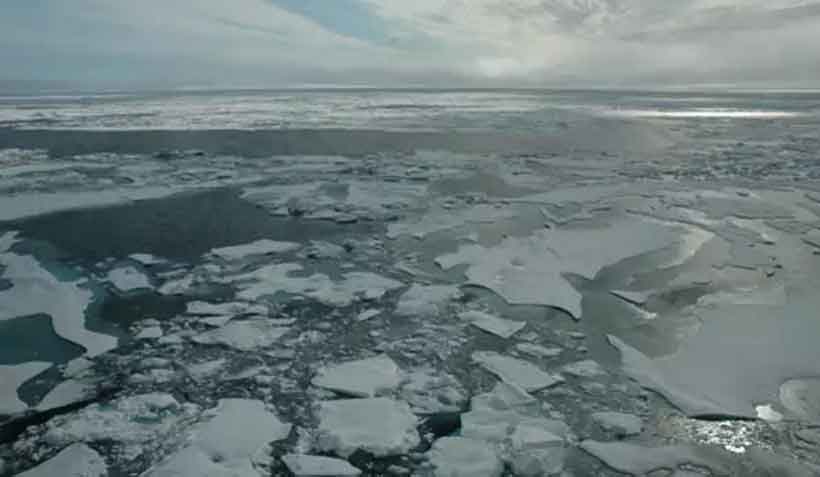 Arctic sea ice, as seen from an ice breaker ship in 2014.Bonnie Light/University of Washington