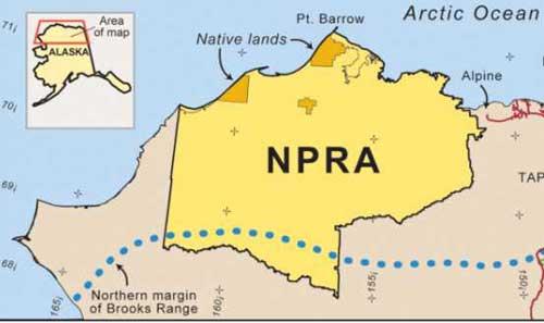 Comment Period Extension: National Petroleum Reserve Plan