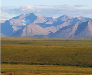 Permafrost underlies much of this tundra landscape in Alaska, as well as similar areas in the circumpolar North. Permafrost contains substantial stores of carbon that are vulnerable to release as climate warms. Photo courtesy of Christina Schädel